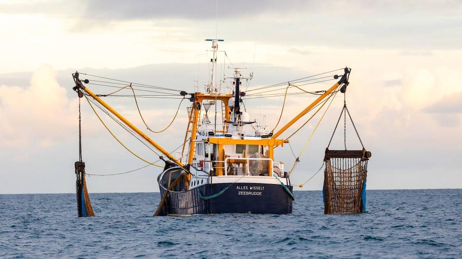 Ein belgischer Trawler vor der britischen Küste
