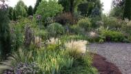 Keine dröge Angelegenheit: Am richtigen Ort, mit den richtigen Pflanzen ist im Kiesgarten üppiges Wachstum kein Wunder.