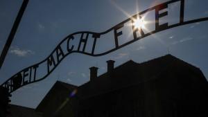 Fehlerhafter Bericht über den Holocaust