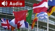 """""""WTO-Verurteilung in Aussicht"""": Jürgen Mattes (DIW) im F.A.Z. Business-Radio"""