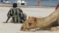 Touristenparadies kämpft gegen Gewalt