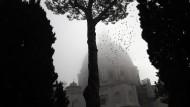 Der Vatikan im Zwielicht