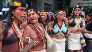 Indigene fordern Schutz des Amazonas-Regenwalds