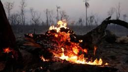 """Morales lässt Boliviens Zukunft verbrennen"""