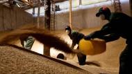Die Landwirtschaft könnte Afrikas Hoffnung sein