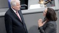 Horst Seehofer und Andrea Nahles im Bundestag