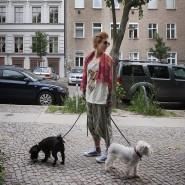 Gefragtes Berliner Szenenviertel: Wohnen im Prenzlauer Berg.
