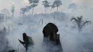 Ein Stich in die Lunge der Welt: Große Bereiche des Regenwalds im Amazonasgebiet brennen.