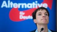 Könnte die AfD auf Frauke Petry verzichten?