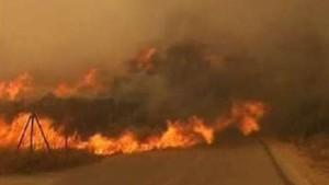 Waldbrände erreichen Athen