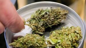 Nächste Übernahme auf dem Marihuana-Markt steht bevor