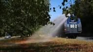 Die Bochumer Polizei unterstützt die Stadt bei der Bewässerung von Bäumen mit dem Einsatz eines Wasserwerfers. Die Linden können nicht tief genug wurzeln, da im Untergrund die U-Bahn verläuft.
