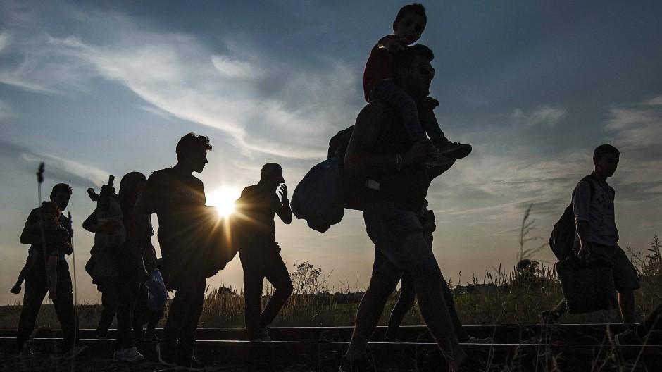 Flüchtlinge überqueren die Grenze zwischen Ungarn und Serbien.