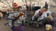 Das Vieh wird mit Waffen verteidigt: Die Tiere sind wertvoll geworden.