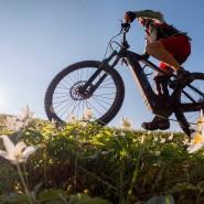 Wer ein E-Bike kaufen will, überlegt sich besser vorher, wo die Prioritäten liegen.