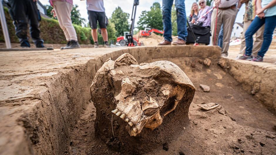 Steinzeitlicher Fund in Frankfurt: Bei Bauarbeiten wurden die Überreste eines Menschen entdeckt.