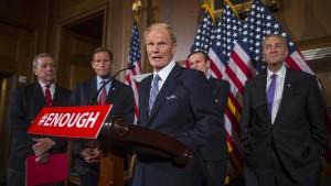 Verschärfung des Waffenrechts scheitert im amerikanischen Senat