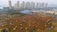60 Schwimmbecken könnte das Erdreich füllen, dass für die fünf Hektar große Fläche für das neue Krankenhaus in Wuhan planiert wurde.
