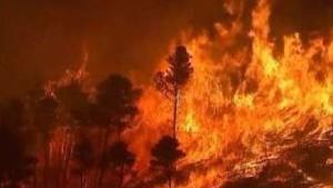 Waldbrände noch immer außer Kontrolle