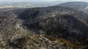 Satellitenbilder zeigen Zerstörung auf Euböa