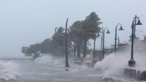 """""""Irma"""" fordert erste Todesopfer"""
