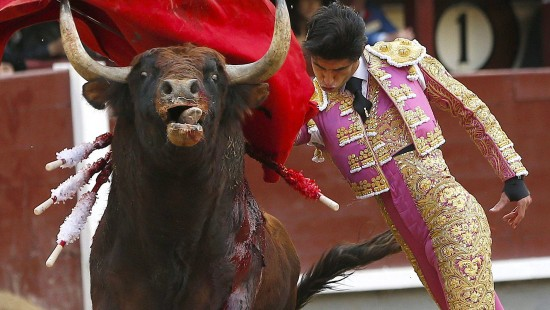 Mehrere Tote bei Stierkampffestivals