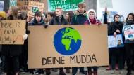 F.A.Z.-Klimablog: 10 Tipps, wie jeder CO2 einsparen kann