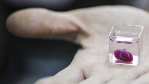 Forscher drucken Mini-Herz