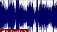 """Ein """"unangenehmes"""" Audio-Beispiel aus einem Experiment"""