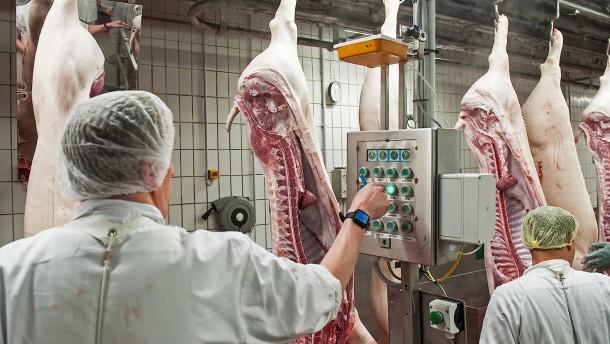 Koalition streitet über Zukunft der Grillwurst