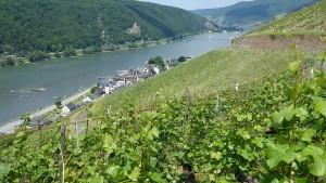 Der sicherste Landkreis in Hessen