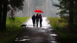 """""""Regen, Regen, Regen, das ist das Einzige, was hilft"""""""