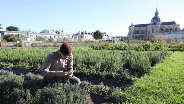 Gärten zum Essen