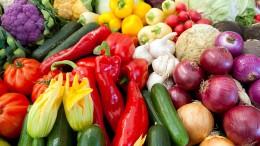 Pädagogen haben Wissenslücken bei Ernährungsfragen