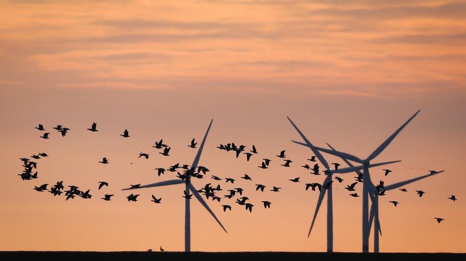 Die EU-Kommission will neue Regularien auch für die Versicherungsbranche – grüne Investitionen sollen bevorzugt werden.