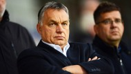Knurrig: Viktor Orbán ist gegen die Zuweisung von Flüchtlingen vor den Europäischen Gerichtshof gezogen und hat ein Referendum abgehalten.