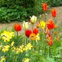 Der richtige Umgang mit den Blumen ist eine wahre Kunst.