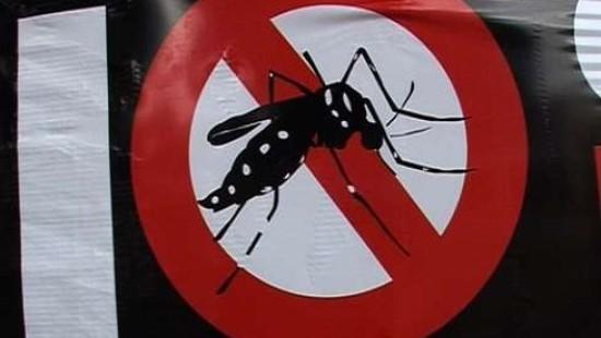 Tödliche Dengue-Epidemie in Rio