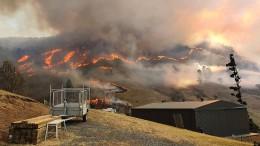Flammenmeer verschlingt Australische Wälder