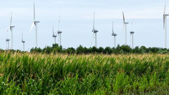 So wird aus Windkraft Strom generiert
