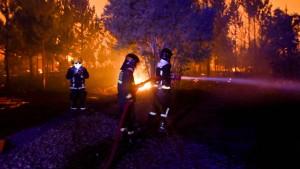 Neue Waldbrände in Chile