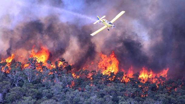 Eine Tote bei Buschbränden