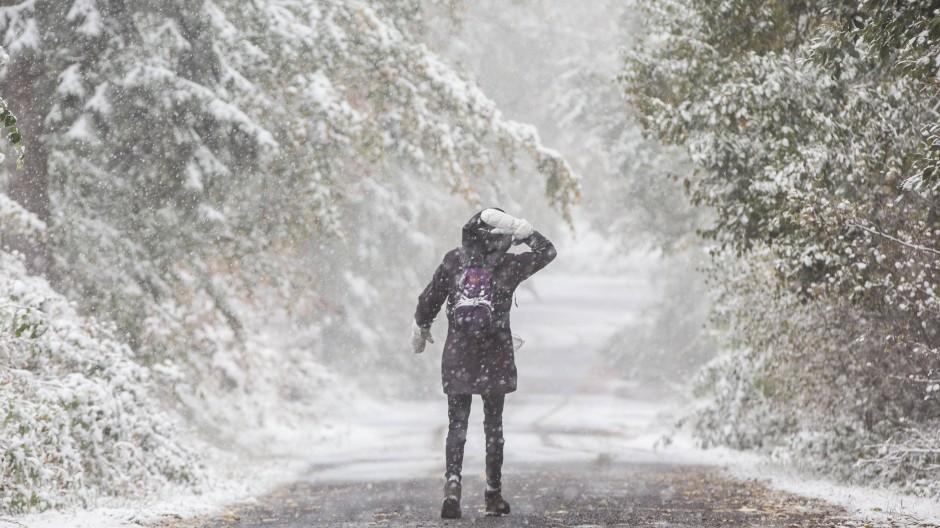 Die Aussichten sind frostig: Jetzt soll doch tatsächlich Winter Einzug halten, sagen Meteorologen.