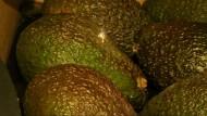 Gegen den Plastikmüll: Avocados mit Laser-Tatoo im Supermarkt