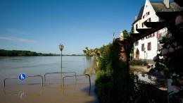 Der Rhein flutet mit Vorwarnung