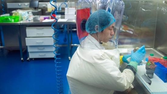 Labor in Wuhan weist Anschuldigungen zurück