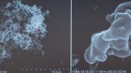 Feinstaubpartikel unter einem Elektronenmikroskop.