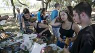 Fleischfreier Genuss: Veganer-Picknick im Hayarkon-Park von Tel Aviv.