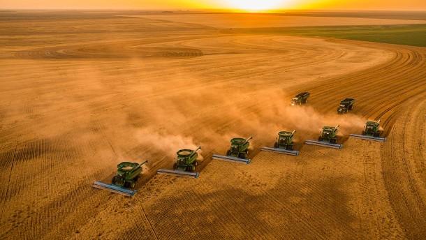 Landwirtschaft: Wie wird die Welt nur satt?