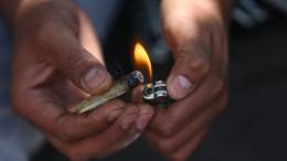 Cannabis bleibt beliebteste Droge in Deutschland